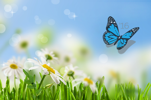 Spring has Sprung! 5 Top Features of the Sales Cloud Spring '16 Release