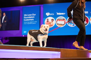 What Service Professionals Learned at Dreamforce