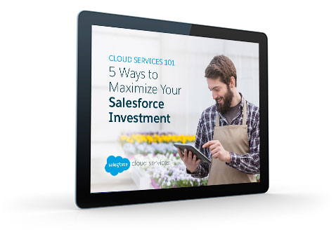How to Maximize Your Salesforce Investment