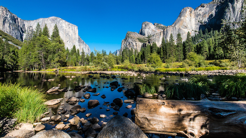 Waterfalls, Mountains, and Tech? Why Salesforce Loves the National Parks